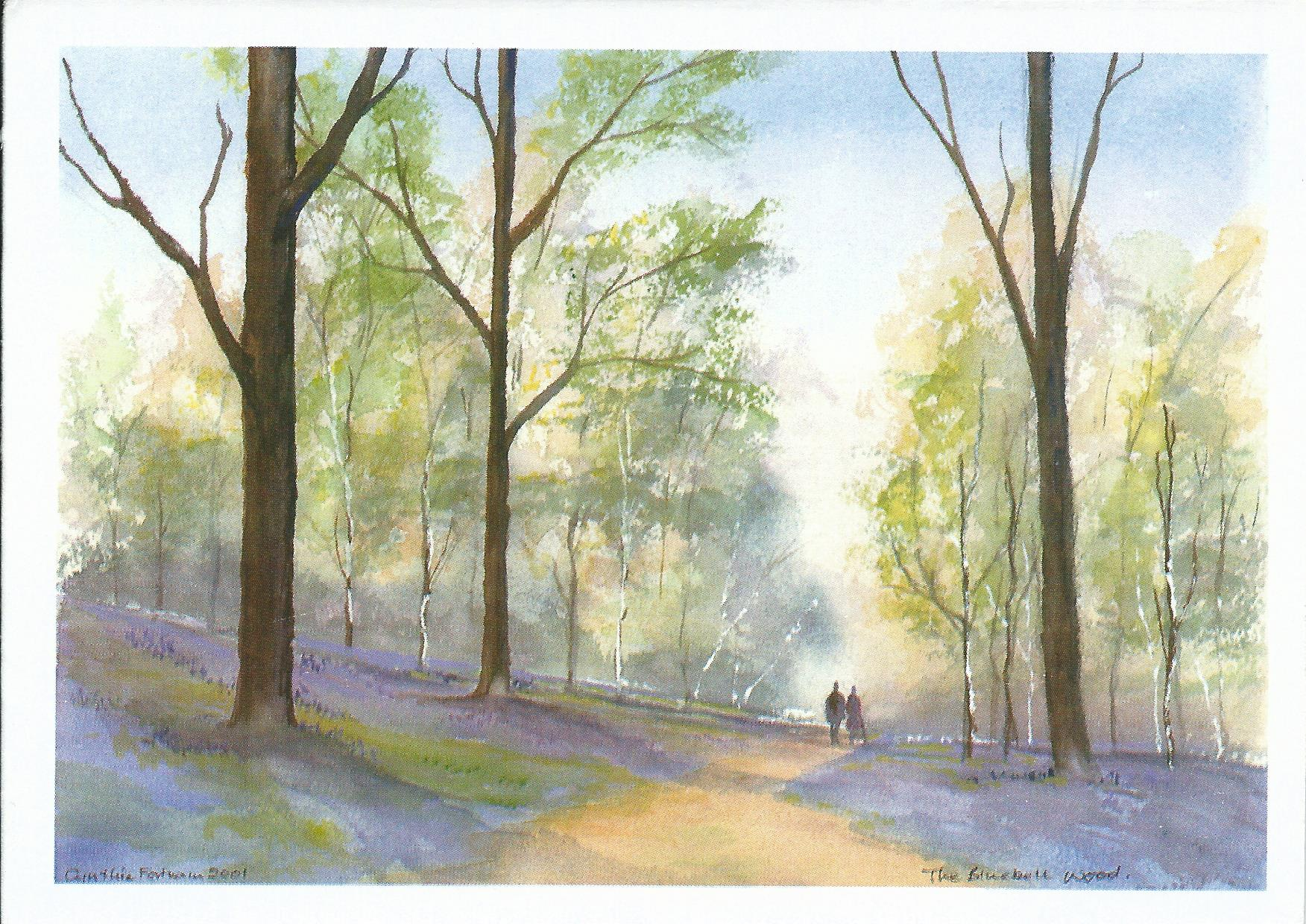 RCHSCards-Bluebell Wood